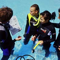 PADI Assistant Instructor Ausbildung